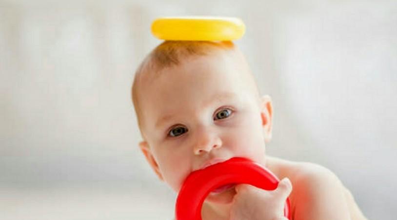Когда мылаш грызет игрушки