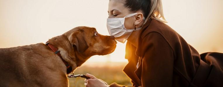 Собаки нас любят за запах